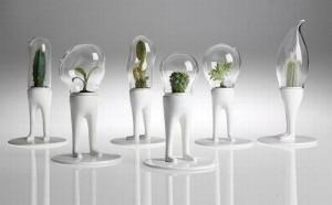 Indoor Garden Planter lamps