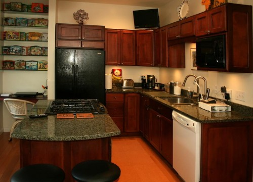 maple kitchen cabinets - Different Types Of Kitchen Cabinets