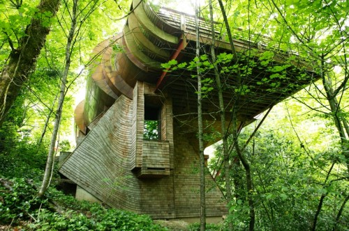 Organic Architecture And Its Aspects