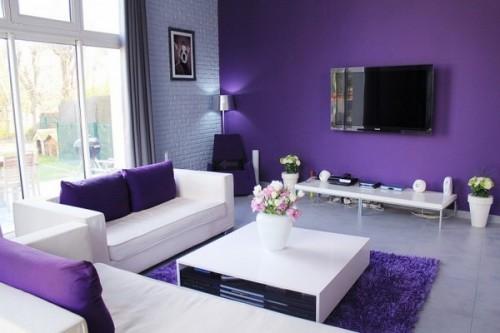 Purple Home Decorating Color