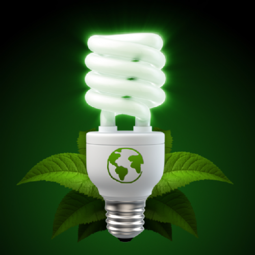 Use compact fluorescent light bulbs