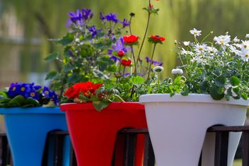 Red and white pots for garden