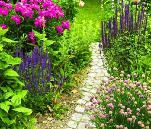 Attractive Garden Path