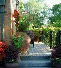 Green Decks to Your Home Garden