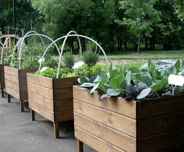 Wooden Garden Crates for Indoor Gardening