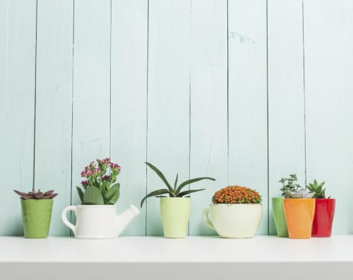 ways to bring colour into your home this spring
