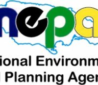 Major Environmental Initiative launched by NEPA