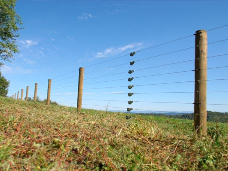 Common Electric Fencing Mistakes and How to Avoid Them