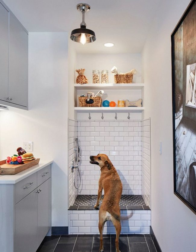 Home Features for the Ultimate Pet Owner